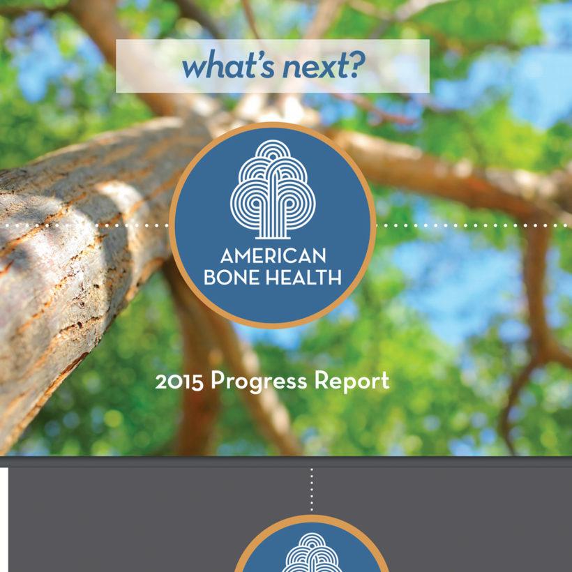2015 progress report